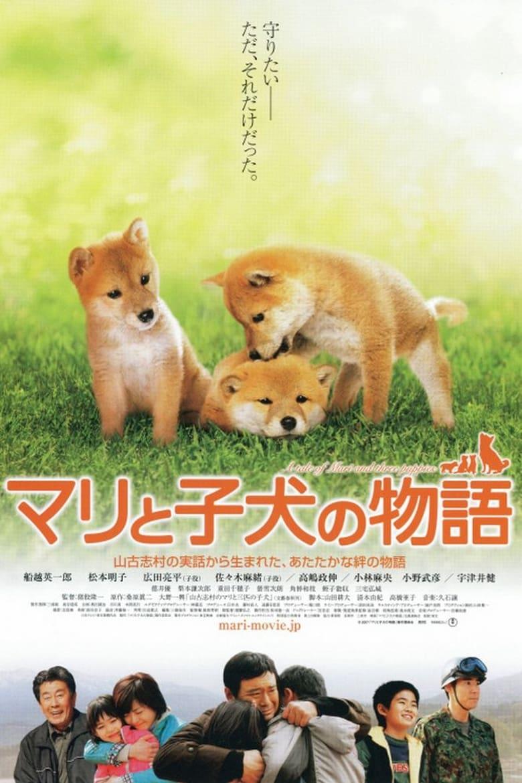 ดูหนังออนไลน์ฟรี A Tale of Mori and Three Puppies (Mari to koinu no monogatari) (2007) เพื่อนซื่อ ชื่อ มาริ