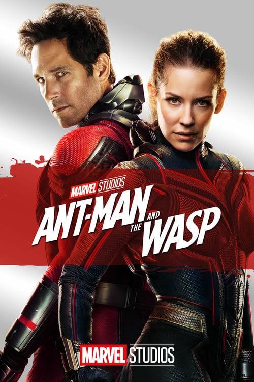 ดูหนังออนไลน์ฟรี Ant-man and the wasp (2019) แอนท์-แมน และ เดอะ วอสพ์