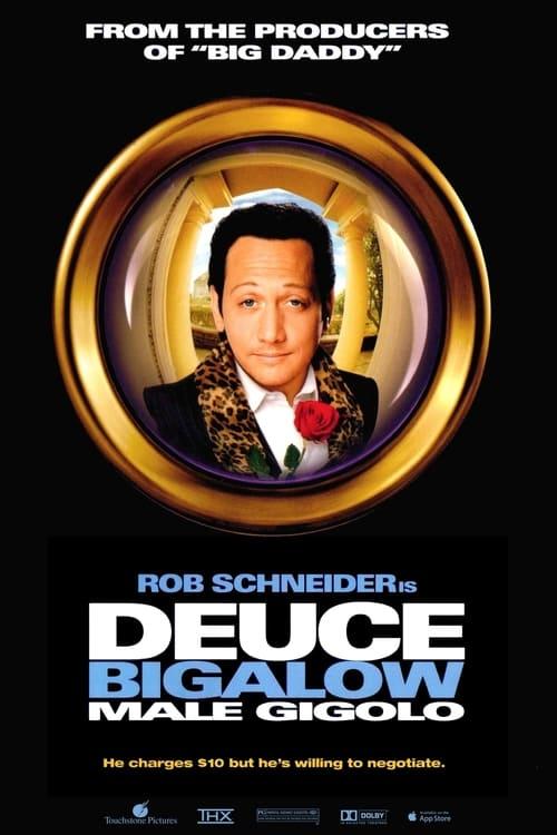 ดูหนังออนไลน์ฟรี Deuce Bigalow Male Gigolo (1999) ดิวซ์ บิ๊กกะโล่ ไม่หล่อแต่เร้าใจ