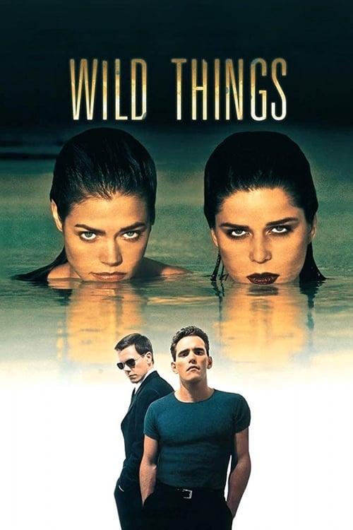 ดูหนังออนไลน์ฟรี Wild Things 1 (1998) เกมซ่อนกล ภาค 1