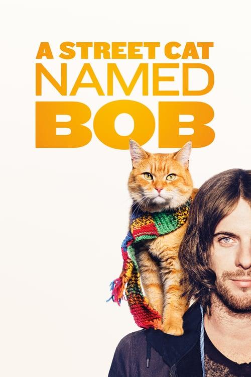 ดูหนังออนไลน์ฟรี A Street Cat Named Bob (2016) บ๊อบ แมว เพื่อน คน