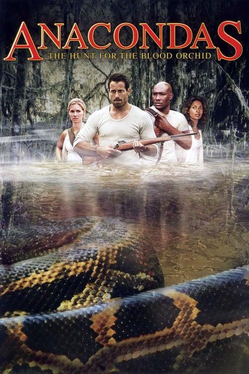 ดูหนังออนไลน์ฟรี Anacondas 2 (2004) อนาคอนดา เลื้อยสยองโลก 2 ล่าอมตะขุมทรัพย์นรก