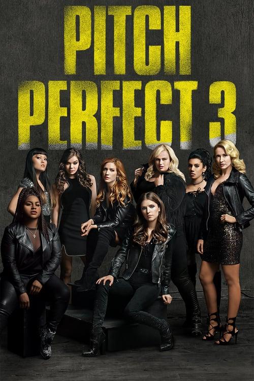 ดูหนังออนไลน์ฟรี Pitch Perfect 3 (2017) ชมรมเสียงใส ถือไมค์ตามฝัน 3