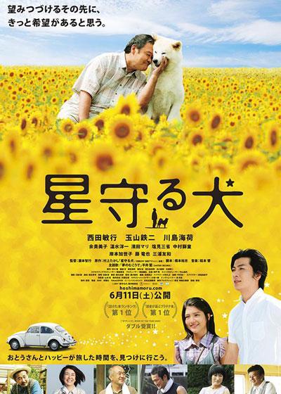 ดูหนังออนไลน์ฟรี Star Watching Dog (2011) Hoshi Mamoru Inu [ซับไทย]