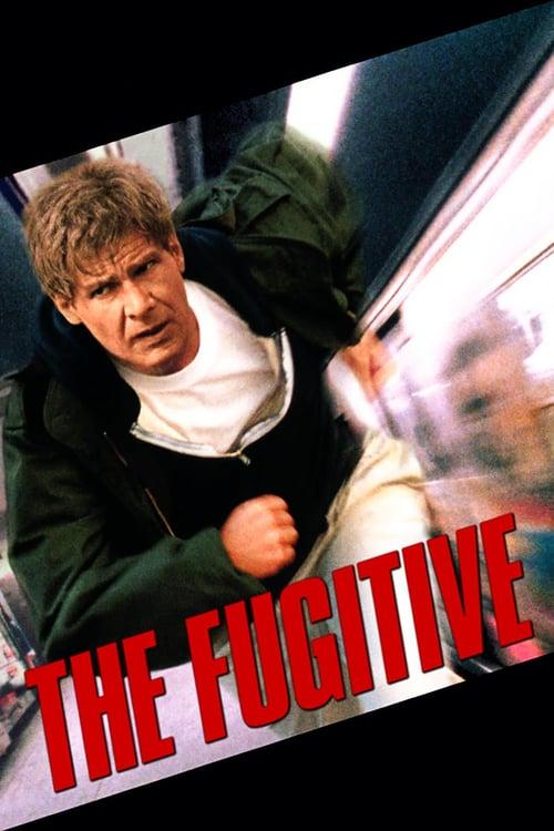 ดูหนังออนไลน์ฟรี The Fugitive (1993) ขึ้นทำเนียบจับตาย