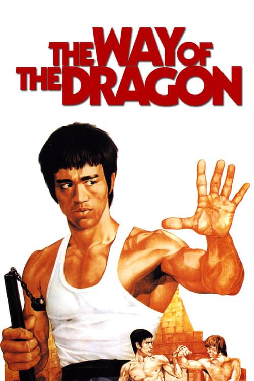 ดูหนังออนไลน์ฟรี The Way of the Dragon (1972) ไอ้หนุ่มซินตึ๊งบุกกรุงโรม