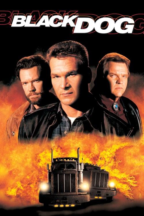 ดูหนังออนไลน์ฟรี Black Dog (1998) ไอ้หมาบ้าผ่าไฮเวย์นรก