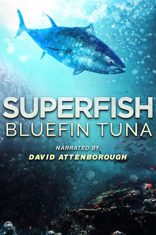 ดูหนังออนไลน์ Superfish Bluefin Tuna (2012)