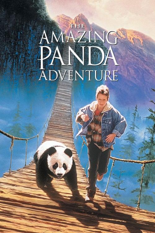 ดูหนังออนไลน์ฟรี The Amazing Panda Adventure (1995) แพนด้าน้อยผจญภัยสุดขอบฟ้า