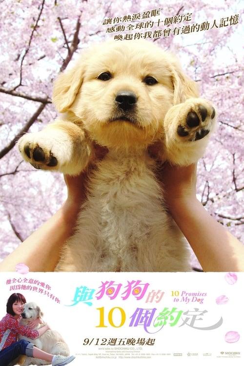 ดูหนังออนไลน์ฟรี 10 Promises to My Dog (2008) 10 ข้อสัญญาน้องหมาของฉัน