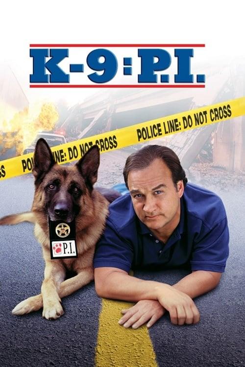 ดูหนังออนไลน์ฟรี [NETFLIX] K-9 P.I. (2002)