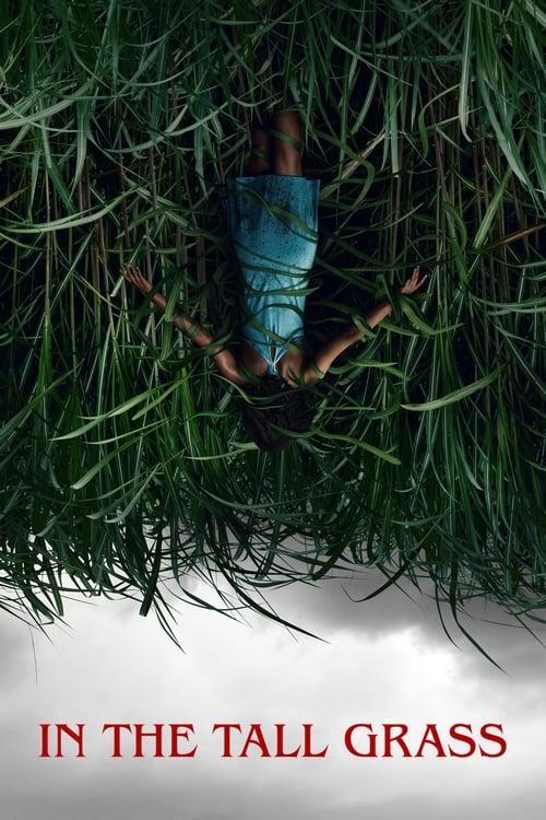 ดูหนังออนไลน์ฟรี In the Tall Grass (2019) พงหลอนมรณะ