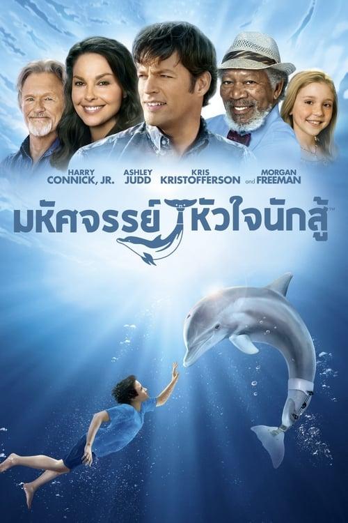 ดูหนังออนไลน์ฟรี [NETFLIX] Dolphin Tale (2011) มหัศจรรย์โลมาหัวใจนักสู้