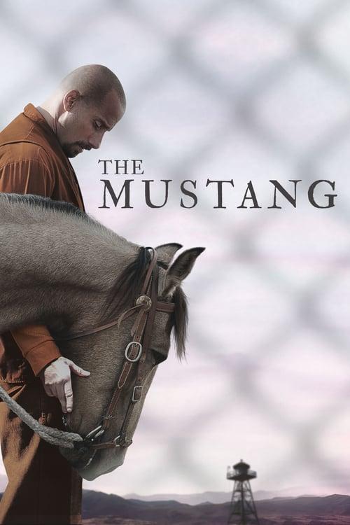 ดูหนังออนไลน์ฟรี [NETFLIX] The Mustang (2019) ม้าป่าแสนพยศ